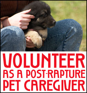 volunteer as a post rapture pet caretaker banner
